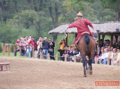 cityrama-magic-hungary-tour-godollo-palace-horse-show-17 copy