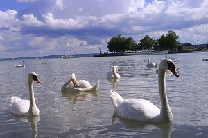 round trip in hungary balaton
